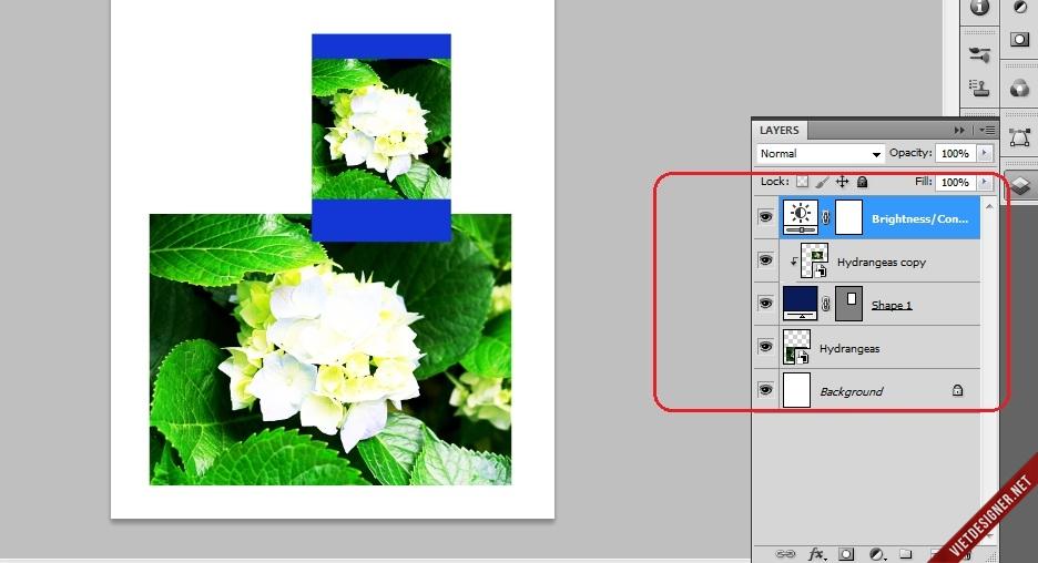 LXjhS9s.jpg