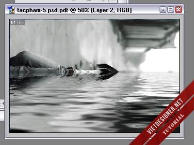 z1LYA80.jpg