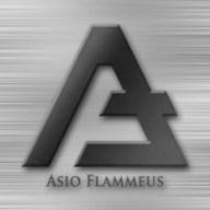 Asio Flammeus