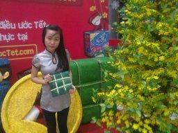 hoalong1120
