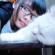 Mèo Lười Thiên Thanh