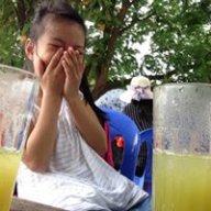 Lưu Tú Anh 9119