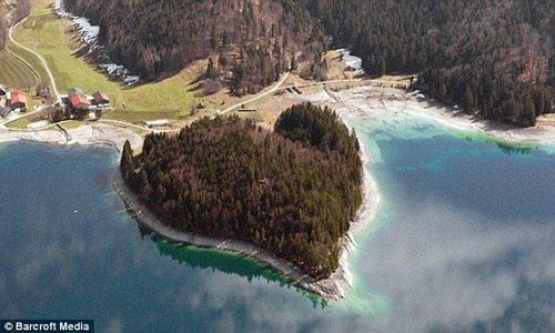 Một khu rừng gần hồ Walchen, Bavarian Alps, Đức.