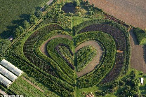 Một khu vườn ở Waltrop, gần Dortmund, Đức.