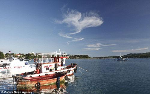 Đám mây hình trái tim trên đảo Bohol ở Philippines.