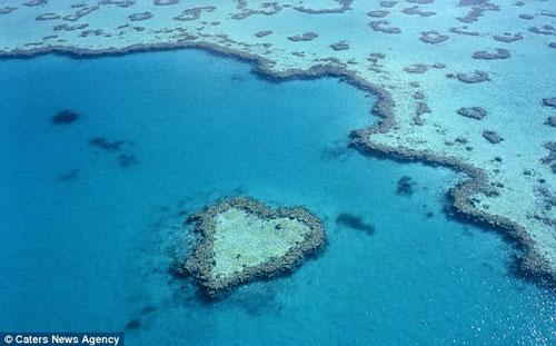 Đá ngầm ở biển phía đông Australia nhìn từ trên cao.