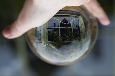 Những bức ảnh lồng vào quả cầu pha lê độc đáo