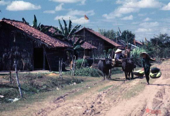 Tháng 1/1969. Thôn xóm ở Vĩnh Lộc.